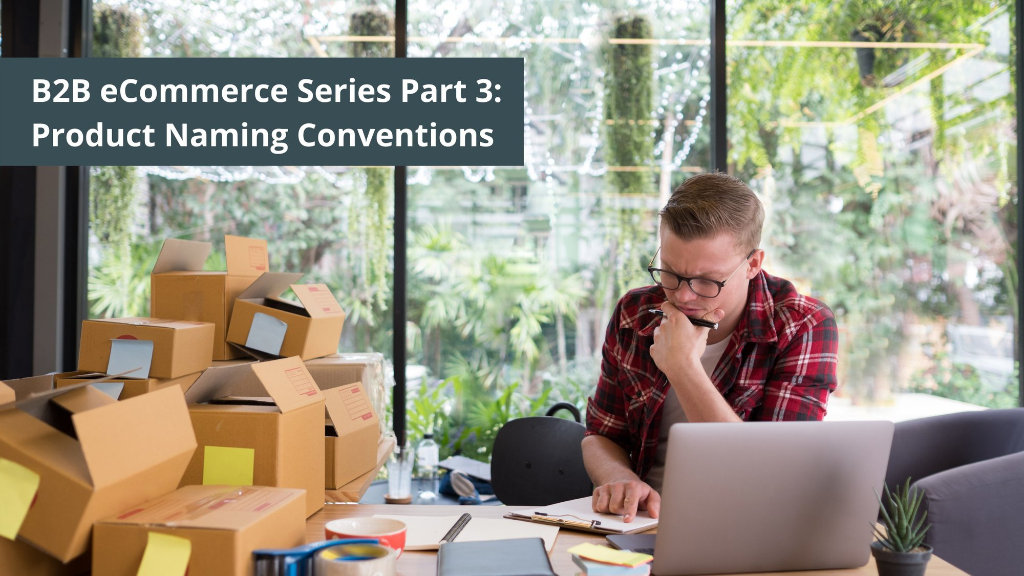 B2B eCommerce Series Part 3: Product Naming Conventions